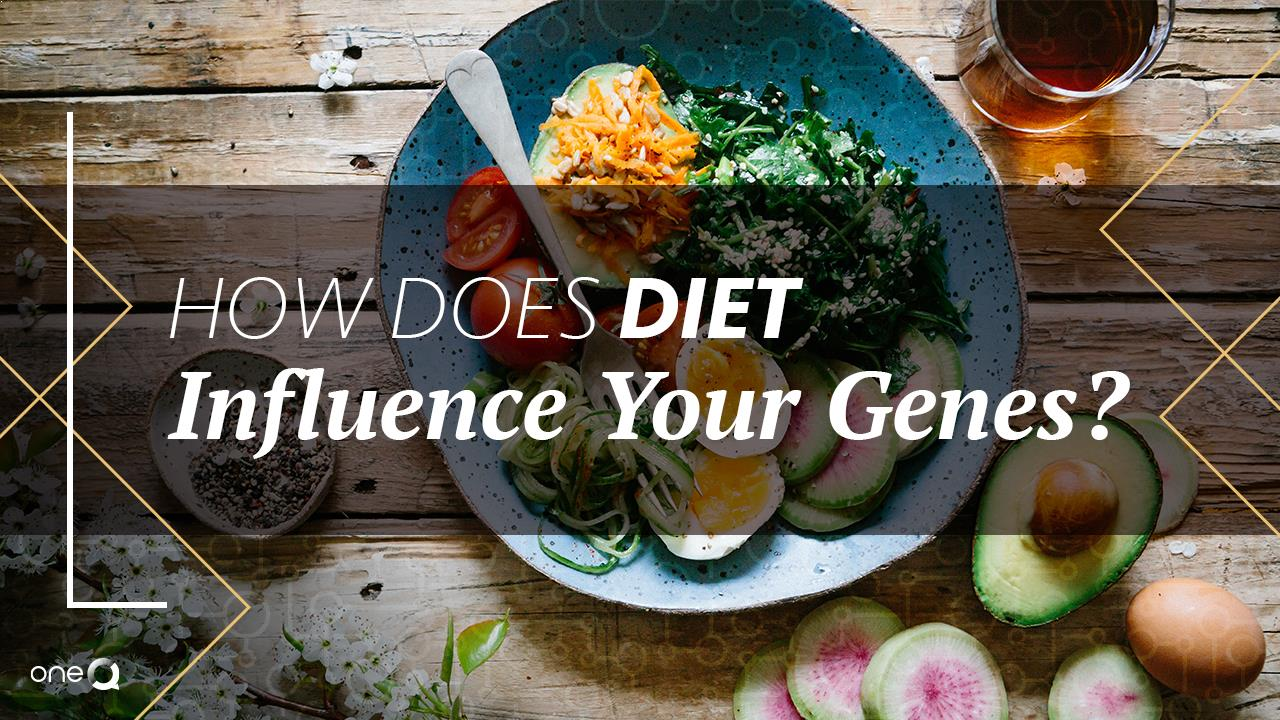 How Does Diet Influence Your Genes? - Simply One Question - One Q