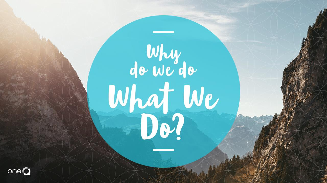 Why Do We Do What We Do? - Simply One Question - One Q